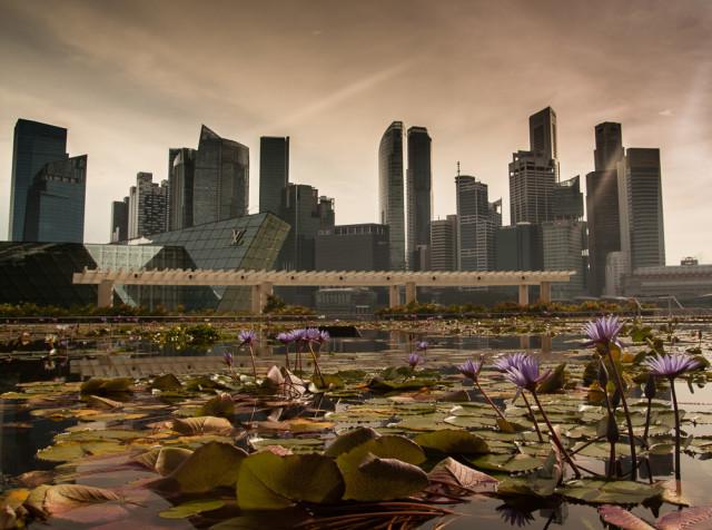 Panorama Marina Bay. Autor: Lukáš Budínský (foto.lukasx.cz), Fotoaparát: Canon EOS 500D, Objektiv: 17-50mm