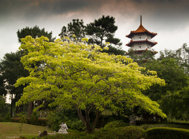 Pagoda v čínské zahradě v Singapuru. Autor: Lukáš Budínský (foto.lukasx.cz), Fotoaparát: Canon EOS 500D, Objektiv: 17-50mm