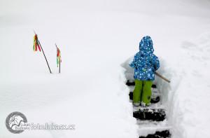 Velikonoce na sněhu. Malý koledník. Autor: Lukáš Budínský (foto.lukasx.cz)