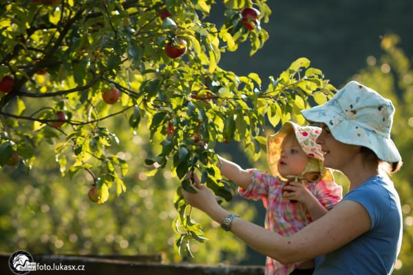 rodinný fotograf na podzim v sadu